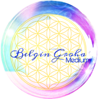 Medium Belgin Groha Logo